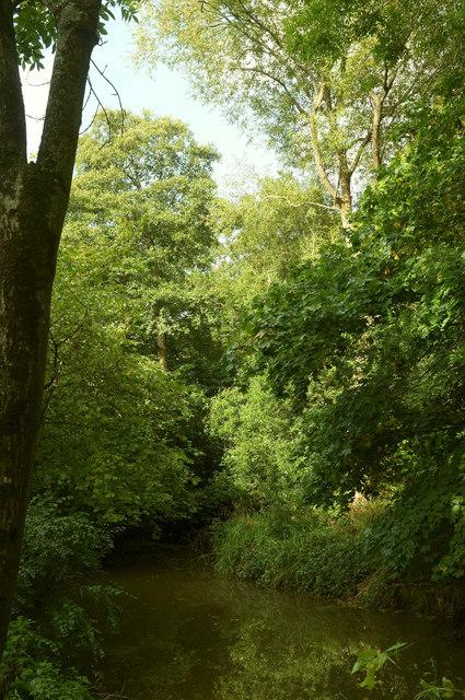 River Chew