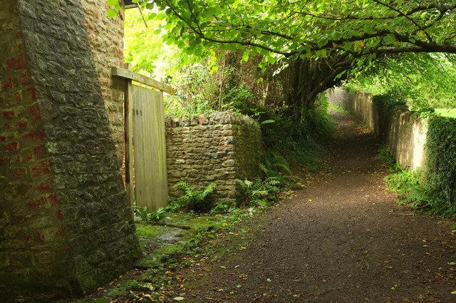 Crickback Lane