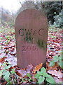 SJ4063 : New 'C W & C' boundary stone in Duke's Drive by John S Turner