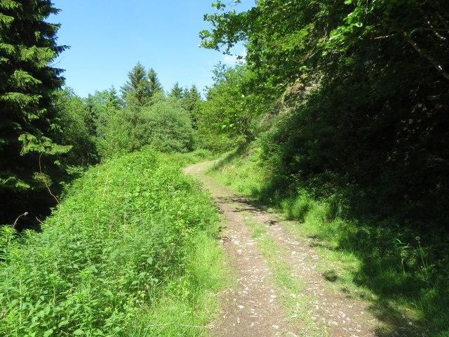 The path down