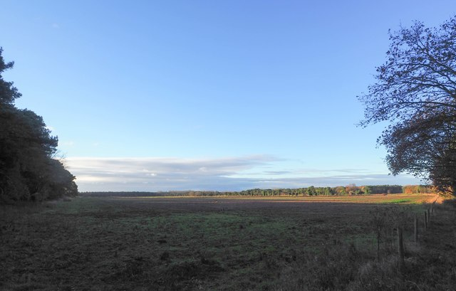 Arable view