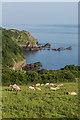 SS6949 : Towards Lee Bay by Ian Capper
