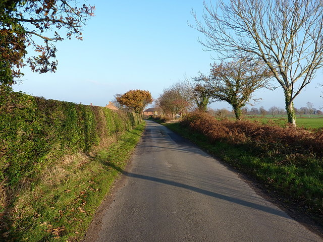 Autumn colours on the way into Heath Lanes