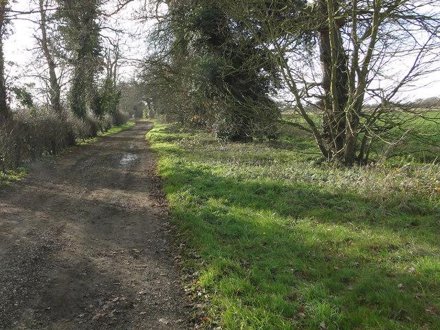 Stone Lane (Track), Langley Green