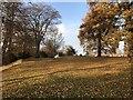 NZ4125 : Wynyard Park by David Robinson
