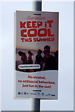 NS3230 : Keep it cool this summer sigh by Thomas Nugent
