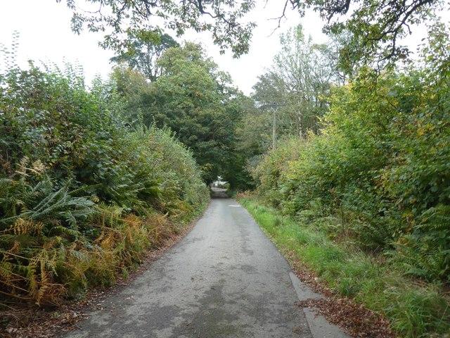 Track above Restormel Farm
