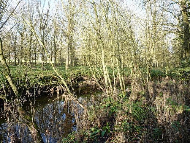 River Blythe near Temple Balsall