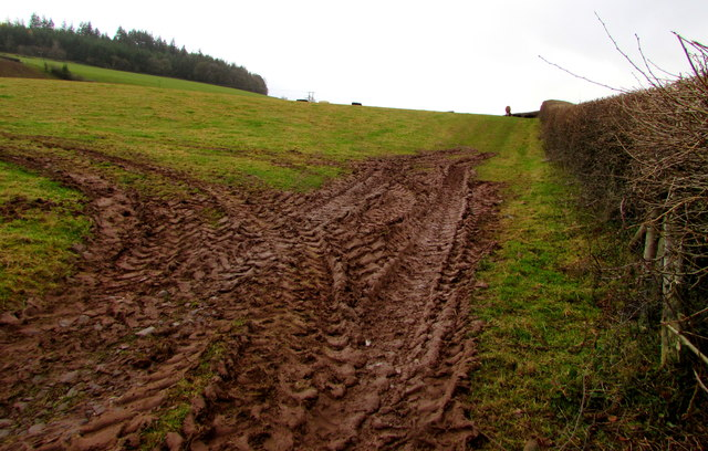 Muddy field entrance south of Llanfaes, Brecon