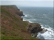 TA1281 : Cliffs along the north edge of Filey Brigg by Mat Fascione