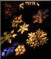 SX9150 : Coleton aglow by Derek Harper