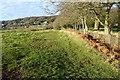 SO7744 : Malvern Common by Philip Halling