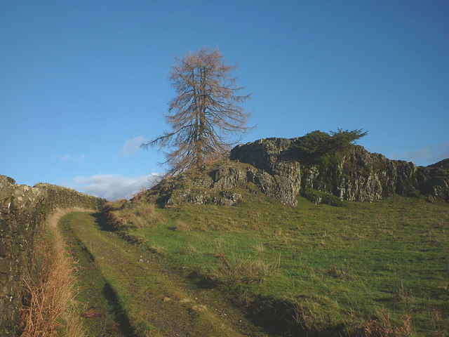 Track to Moss Eccles Tarn