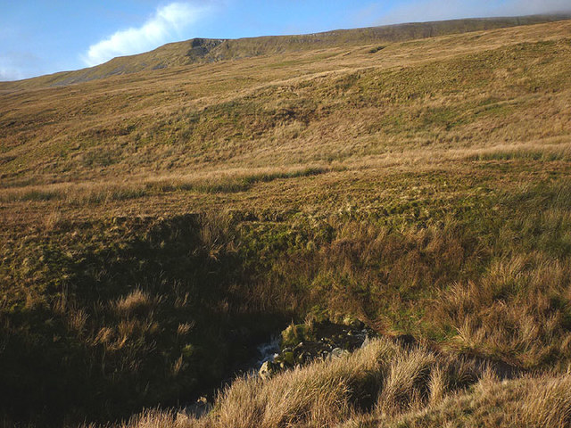 The flank of Whernside