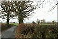 SX8076 : Dartmoor Way near Wilsworthy by Derek Harper