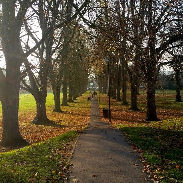 Path across Chippenham Fields
