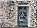 NT9928 : Ordnance Survey Flush Bracket S7644 by Peter Wood