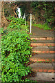 SX9065 : Steps from Teignmouth Road, Torquay by Derek Harper