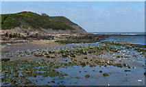 TA0390 : Shoreline at Scalby Ness by Mat Fascione