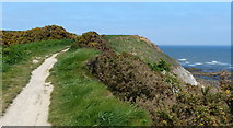 TA0390 : Path at Scalby Ness by Mat Fascione