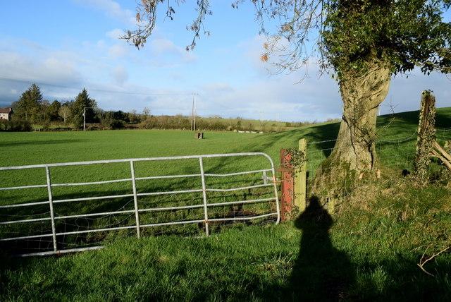 Gate, Freughmore
