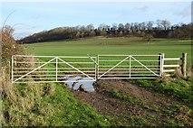 SP0041 : Gates in farmland by Philip Halling