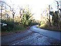 TG4900 : Browston Lane, Lound by Geographer