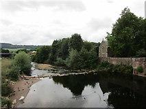 SO5012 : The River Monnow below Monnow Bridge by Jonathan Thacker