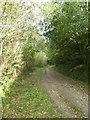 SX0047 : Heligan carriage drive (4) by David Smith
