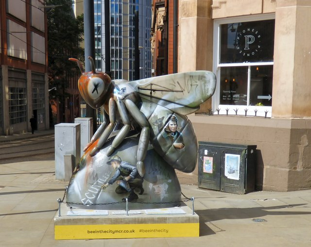 The Federation Bee
