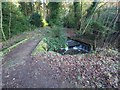 TL8193 : Bridge and Weir over stream leaving Lynford Lakes by David Pashley
