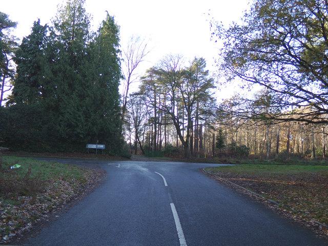 Blocka Road, St Olaves