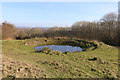 TQ5802 : Midday Christmas 2018 view of the dew pond by Butts Lane by Adrian Diack