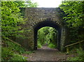 SE9997 : Downdale Road crossing the Cinder Track by Mat Fascione