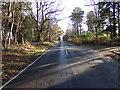 TM4698 : Entering Herringfleet on the B1074 Herringfleet Road by Adrian Cable