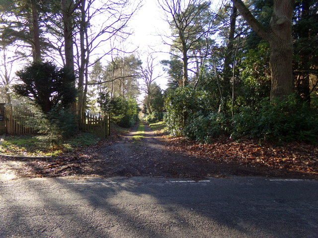 Track off the B1074 Herringfleet Road
