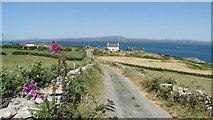 V9722 : Cape Clear Island - road N towards Stone Row by Colin Park