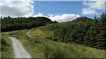 S0573 : Path leading up to Devil's Bit Mountain, Co Tipperary by Colin Park