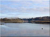 TM2850 : The River Deben below Wilford Bridge by John Sutton