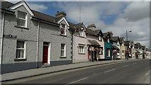 N8056 : Trim - Cottages in Castle St by Colin Park