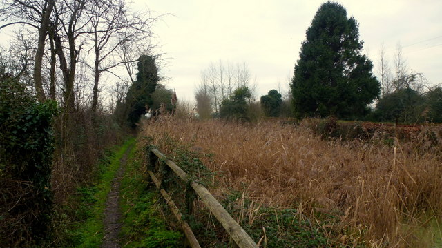 The Thames and Severn Way LDF