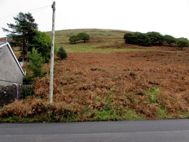 Hillside above Aber Road, Nantymoel