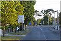 O2227 : Dean's Grange Road by David Dixon