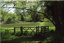 TM2743 : Newbourne Springs Nature Reserve by Simon Mortimer