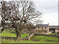 NZ1532 : Farmhouse at Field House Farm by Trevor Littlewood