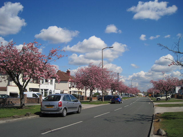 Thingwall Hall Drive in Spring
