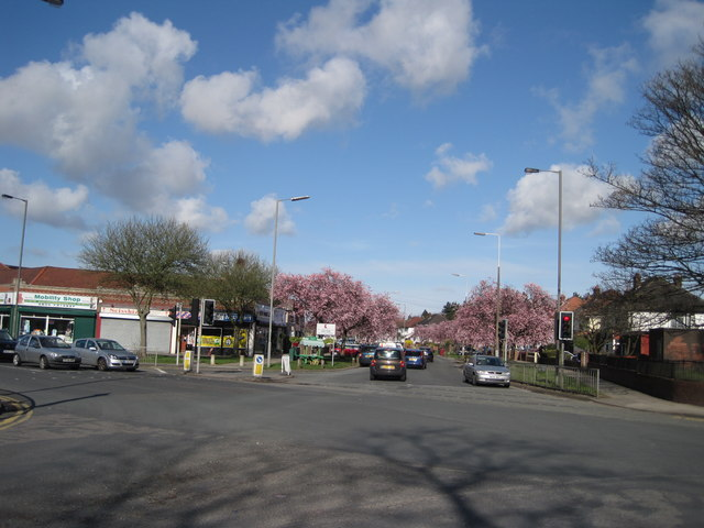 Thomas Lane Junction
