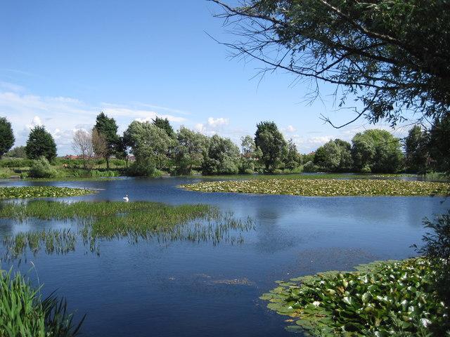 Fish Pond adjacent to Meols Station