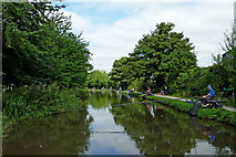 SK0418 : Angling on the Trent and Mersey Canal, Rugeley by Roger  Kidd