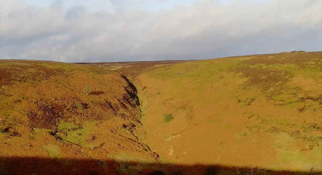 Wild Middle Gill